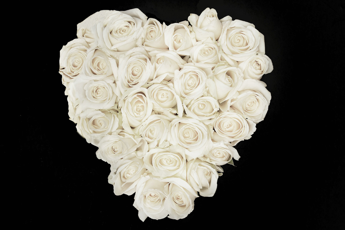 white roses in signature black heart flower box farima perry